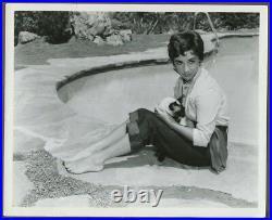 ELIZABETH LIZ TAYLOR Beverly Hills Home Siamese Cat ORIGINAL 1950 Glamour Photo